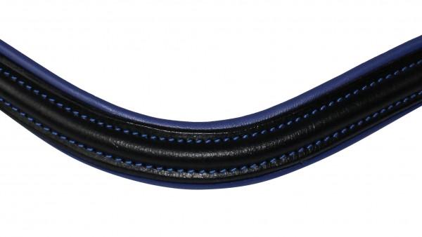 Stirnriemen blau unterlegt1.jpg
